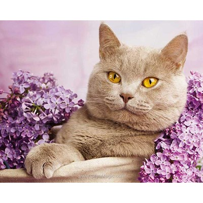 Broderie diamant cat in the lilac - Diamond Painting