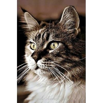 Broderie diamant cat at home de Wizardi