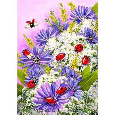 Kit broderie diamant ladybirds - Diamond Painting