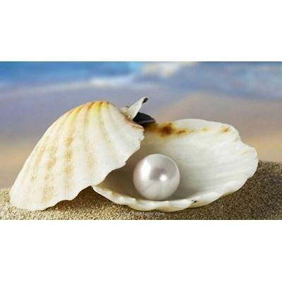 Kit broderie diamant perle de culture - Diamond Painting