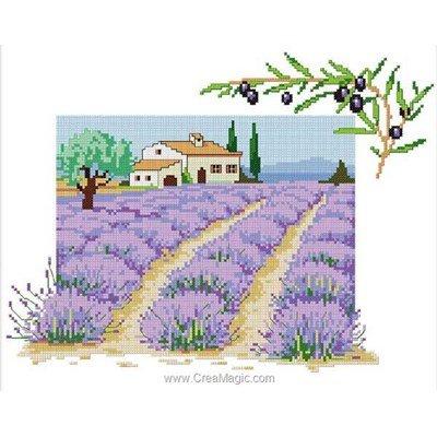 Bruno D'Artois tableau point de croix les lavandes et brin d'olivier