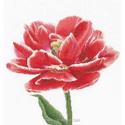 Kit tableau Thea Gouverneur point de croix red/white edged early double tulip sur lin