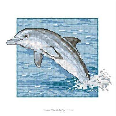 Bruno D'Artois broder en point de croix photo de dauphin