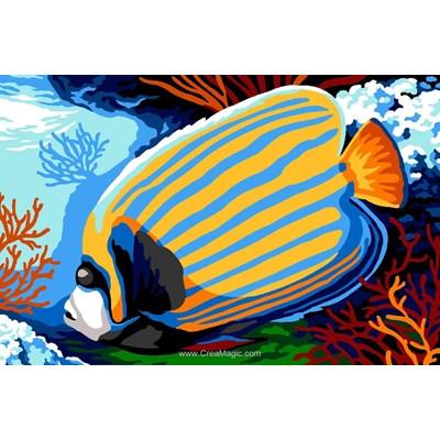 Le poisson empereur canevas - SEG