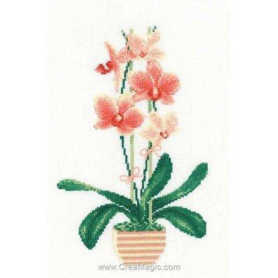 Le point de croix l'orchidée pêche de RIOLIS