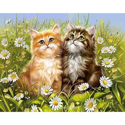 Kit broderie diamant Wizardi summer kittens