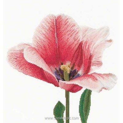 Le point de croix Thea Gouverneur pink darwin hybrid tulip sur lin