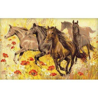 Kit broderie point de croix chevaux au galop aux coquelicots - RIOLIS