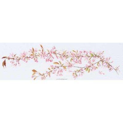 Modèle broderie au point de croix japanese blossom sur aida - Thea Gouverneur