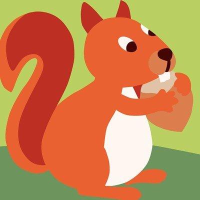 Kit canevas pour enfants DMC ecureuil curieux