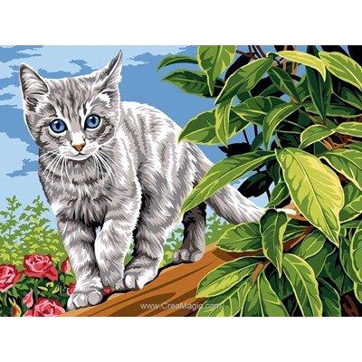 Le petit chat gris canevas - SEG