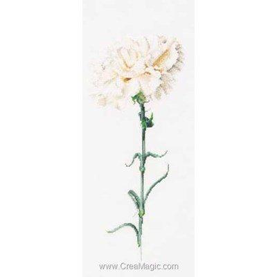 Broderie carnation white sur aida - Thea Gouverneur