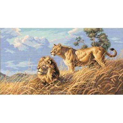 Tableau point de croix Dimensions african lions