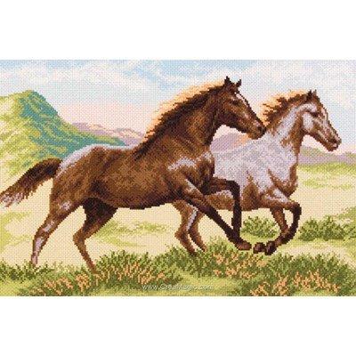 Broderie aida imprimée chevaux au galop - Collection d'art