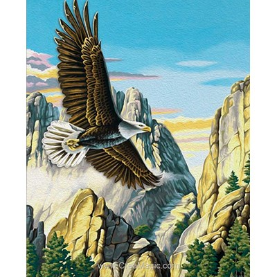 Broderie diamant Diamond Painting mountain eagle