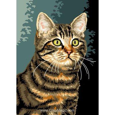 Chat européen canevas chez Luc Création