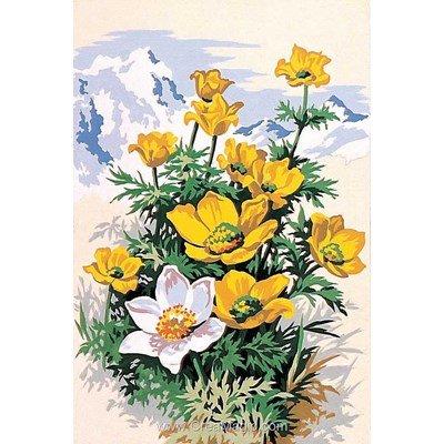 Canevas SEG fleurs des montagnes jaunes