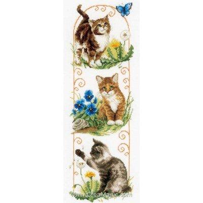 Broderie exploration de chats de Vervaco