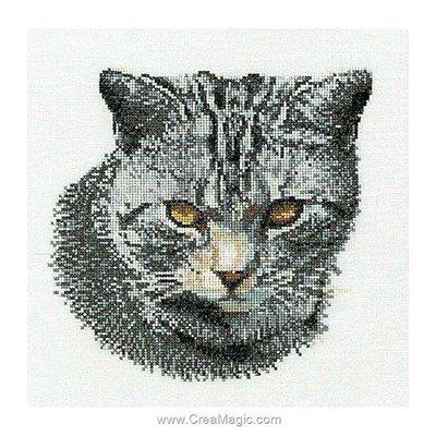 Cyprian cat sur aida modèle broderie - Thea Gouverneur