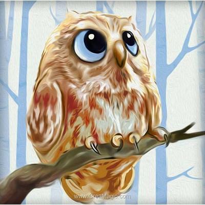 Kit broderie diamant owl - Diamond Painting