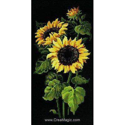 Broderie point compté 3 tournesols en fleur - RIOLIS