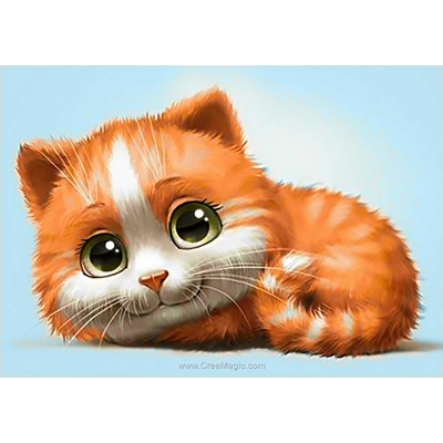 Kit broderie diamant ginger cat - Wizardi