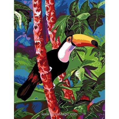 Le toucan de l'oasis canevas chez Margot