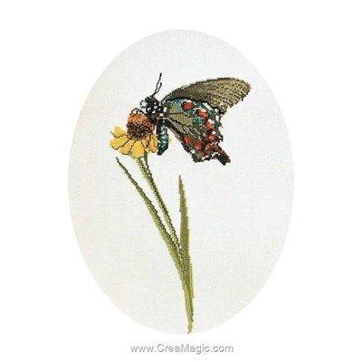 Papillon marron vert sur aida kit à broder de Thea Gouverneur au point de croix