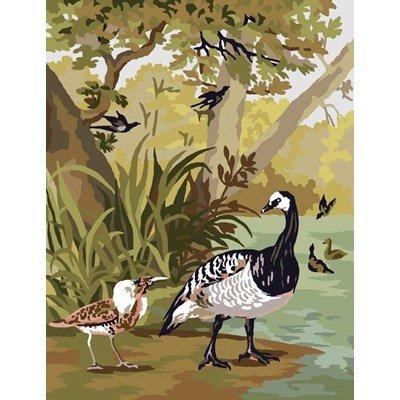 Etude d'oiseaux canevas chez DMC