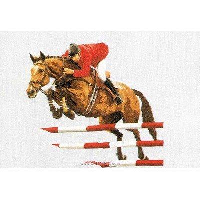 Broderie point de croix le saut d'équitation sur aida de Thea Gouverneur