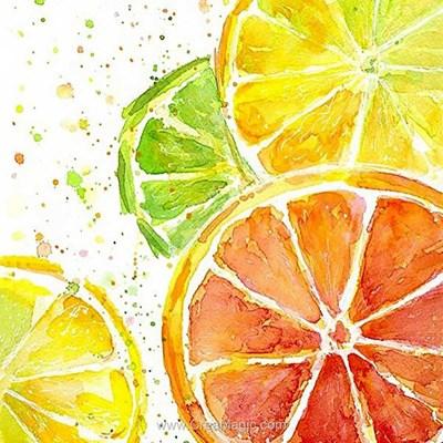 Kit broderie diamant citrus mix de Wizardi