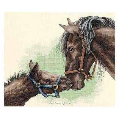 Dimensions modèle broderie au point de croix mother & colt