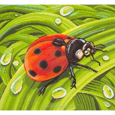 Broderie aida imprimée Collection d'art coccinelle ladybug