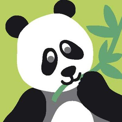 Repas de panda kit canevas debutant - DMC