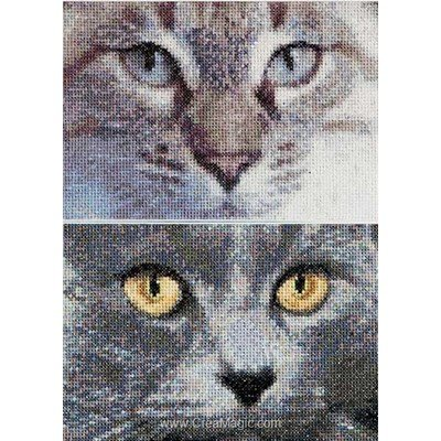 Regards de chat gris sur aida broderie point compté - Thea Gouverneur
