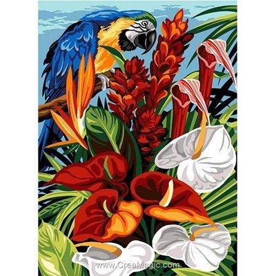 Canevas tropique perroquet - SEG