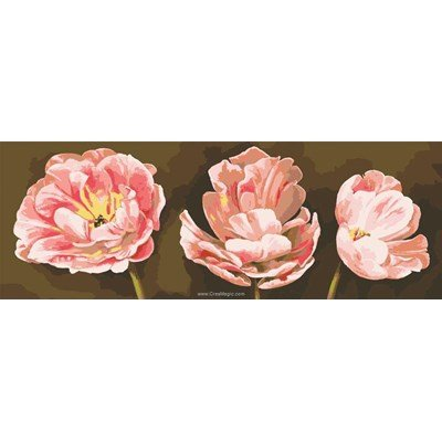 Canevas Collection d'art coquelicots roses