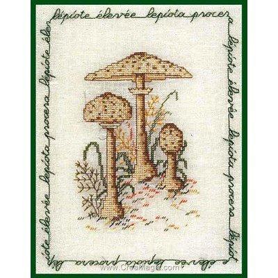 Kit broderie de Le Bonheur Des Dames au point de croix champignon - lepiote élevée