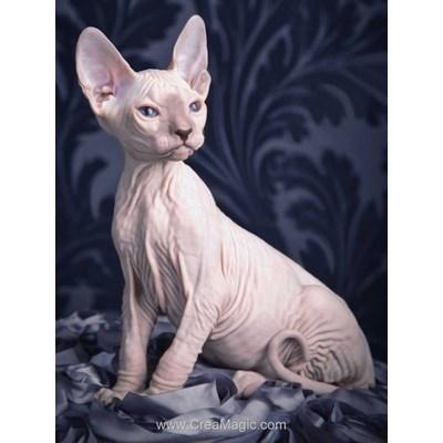 Kit broderie diamant sphynx cat - Diamond Painting
