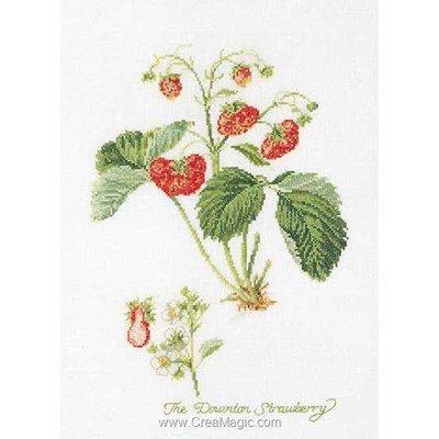 Broderie point de croix Thea Gouverneur les fraises sur lin