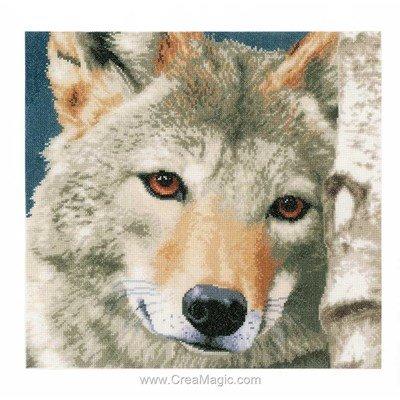 Kit Lanarte tendre loup