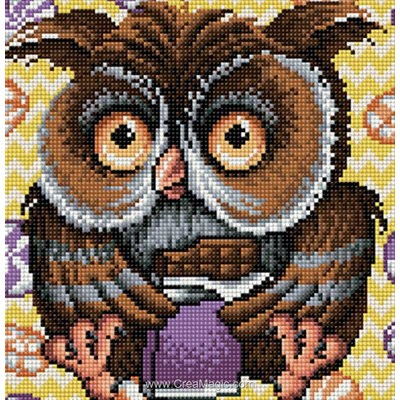 Kit broderie diamant owl de Diamond Painting