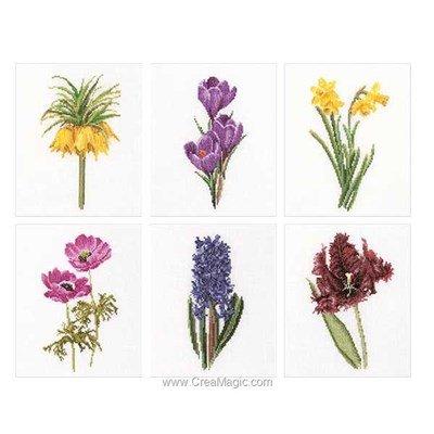 Kit broderie Thea Gouverneur six floral studies sur lin