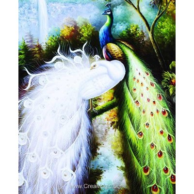 Kit broderie diamant majestic peacocks de Diamond Painting