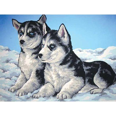 Canevas chiots husky - Collection d'art