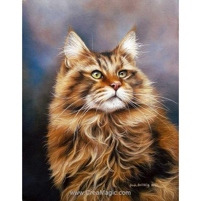 Kit broderie diamant Diamond Painting maine coon