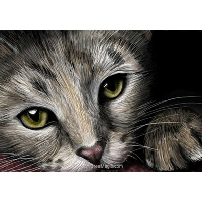 Broderie diamant cat's eyes - Diamond Painting
