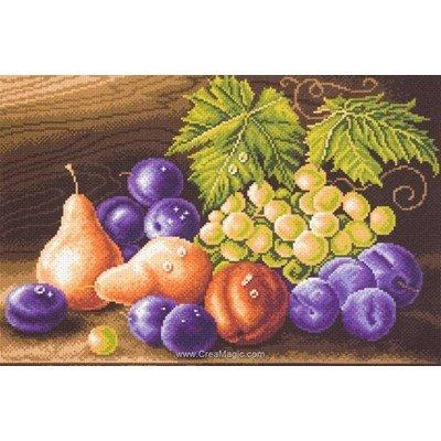 Point de croix imprimé aida Collection d'art fruit composition