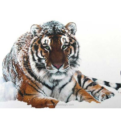 Kit broderie diamant tigre dans la neige de Collection d'art