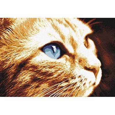 Kit tableau point de croix Marie Coeur profil de chat roux aux yeux bleus